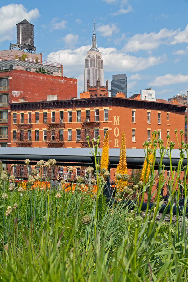The Freedom Tower rises above the High Line and Manhattan. Image © Joe Geronimo