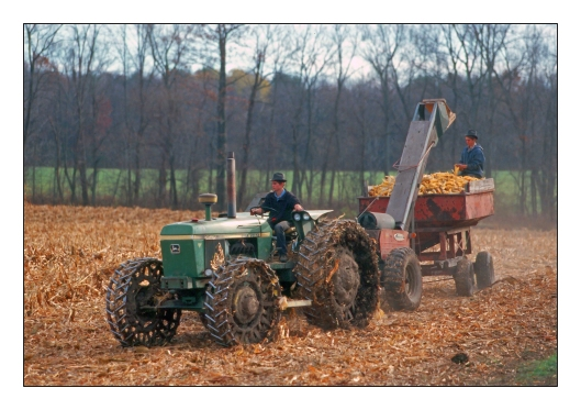 Two Mennonite boys harvesting corn. Kodachrome 64 © Joe Geronimo