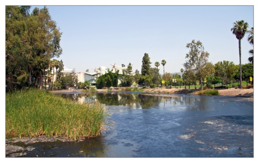 LaBrea Tar Pits Los Angeles, California June 30th 2013. Image © Joe Geronimo
