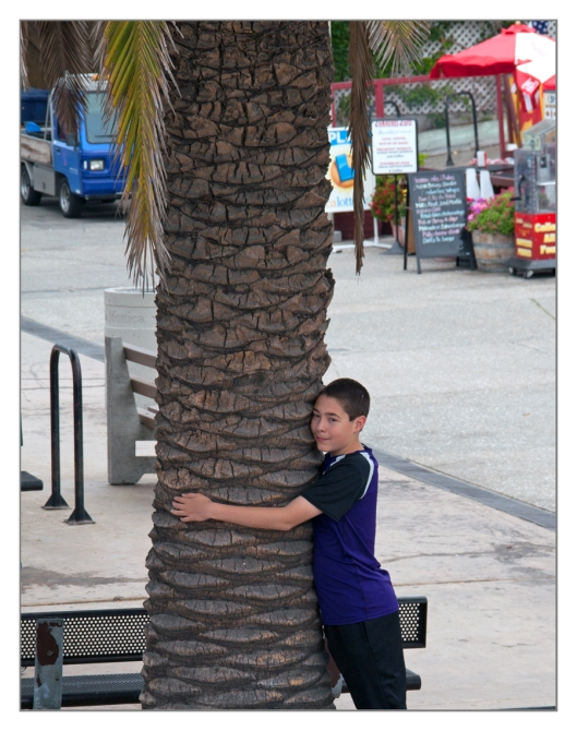 Michael hugging a palm tree in Santa Monica, California on June 25th 2013. Image © Joe Geronimo
