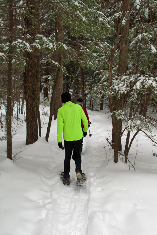 Making our way through the woods February 10th 2015.