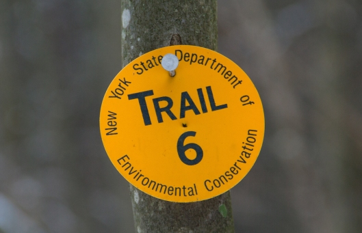 New York State trail marker at Oakley Corners February 10th 2015.