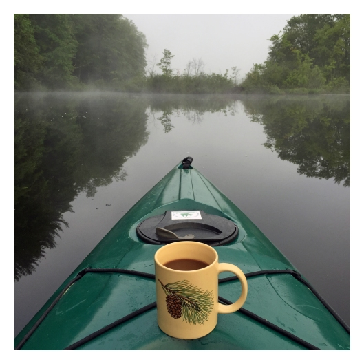 My morning coffee on Long Pond. © Joe Geronimo