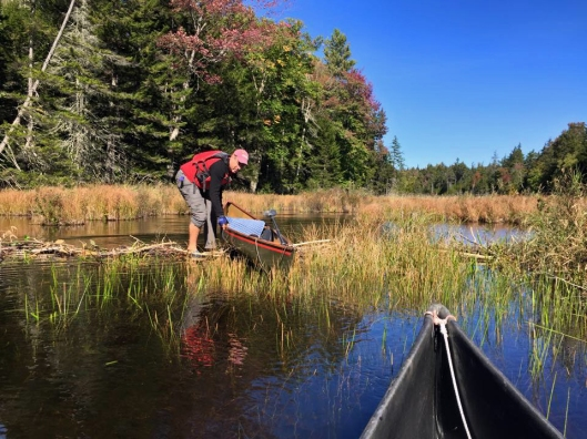 Navigating over one of four beaver damns on the First lake outlet September 26th 2015. Image: Adirondack Connections Guide & Outfitting