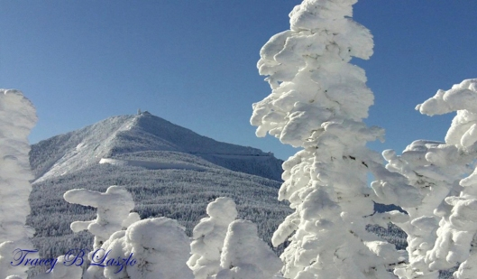 The summit of Whiteface mountain as seen from Mt. Esther. Photo by: Tracey B Laszlo.