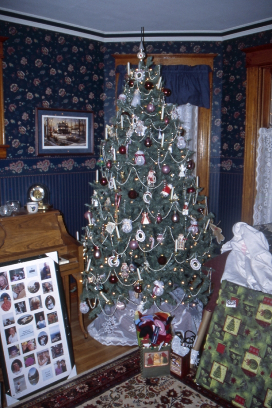 One many Christmas trees that adorned Julie's sister Christine & husband Rick's home during Christmas 2003 in Michigan.