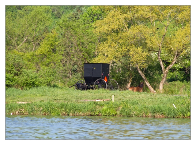 Amish horse & buggy along the shore of Whitney Point Reservoir this morning. Image © Joe Geronimo