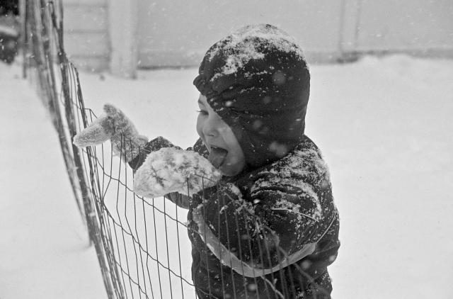 Tasting snowflakes, Michael at 3.5...... Image © Joe Geronimo