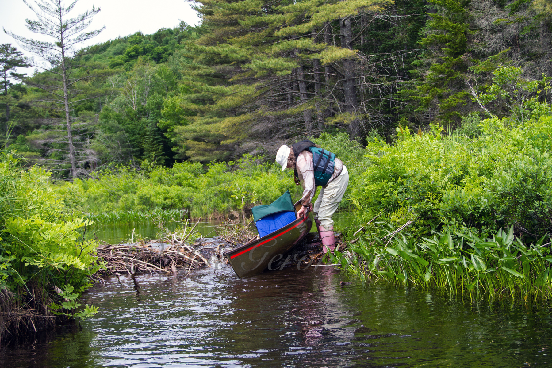 Kathy Navigating Over A Small Beaver Damn Along The Connecting